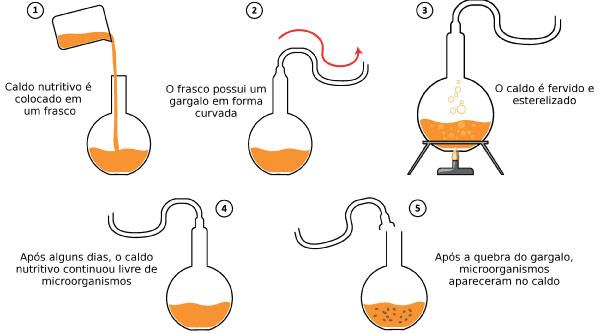 experimento de Louis Pasteur com a infusão fervida em balão de vidro com pescoço alongado.