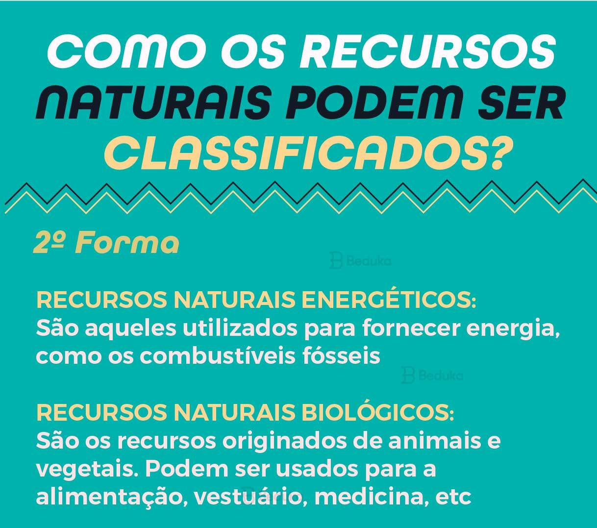 segunda forma de classificar os recursos naturais brasileiros