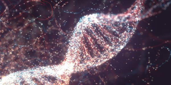 Questões de vestibular sobre genética