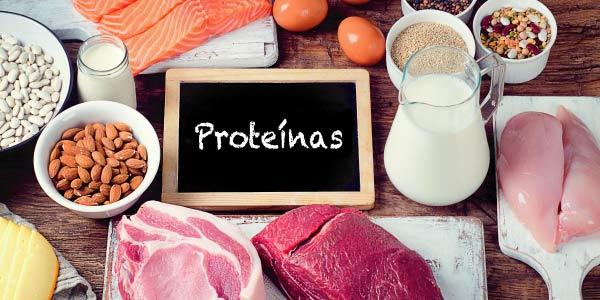 Questões de vestibular sobre proteínas