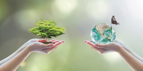 questões do ENEM sobre ecologia