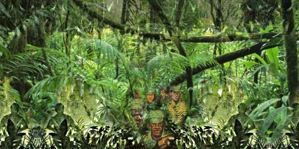 Floresta Mayombe em Angola