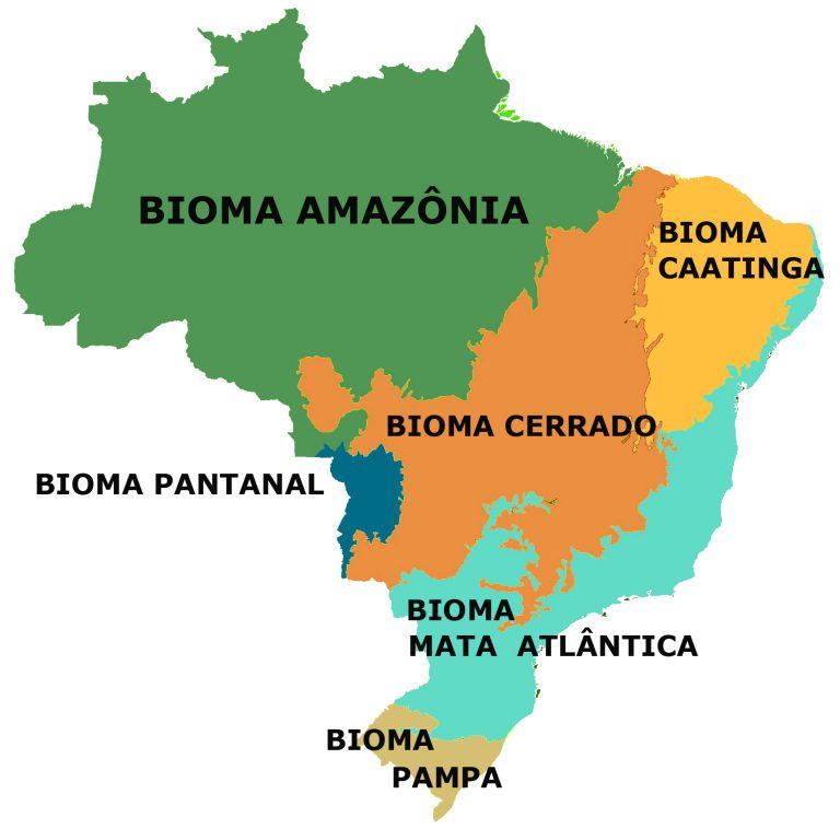 Mapa do Brasil com os 6 tipos de biomas brasileiros