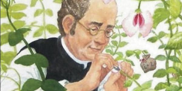 Gregor Mendel e o experimento com as ervilhas