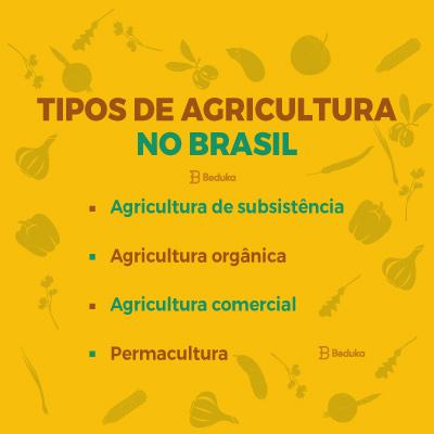 Tipos de Agricultura no Brasil
