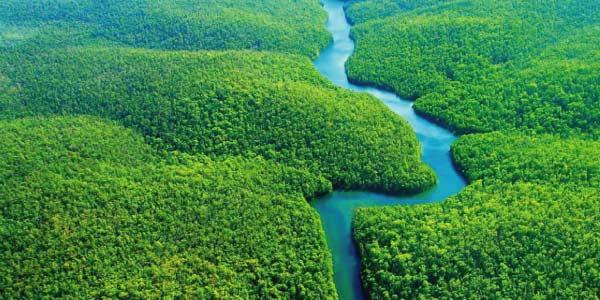 Biomas brasileiros - Amazônia. Imagem de planície verde com um rio cortando pelo centro
