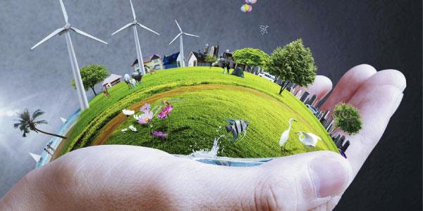 ecologia e meio ambiente: como preservar o meio ambiente?