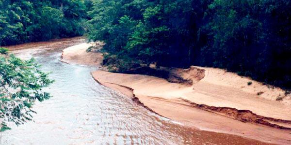 assoreamento de rio como problema ambiental no Brasil