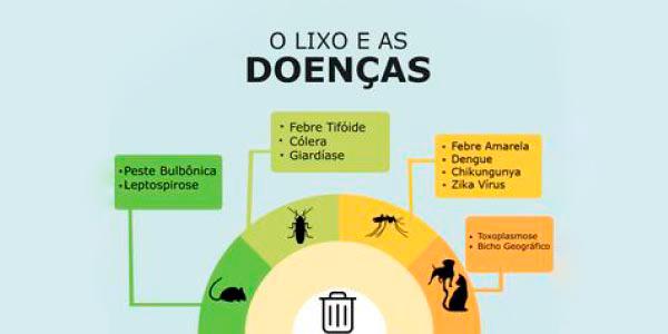infográfico sobre lixo e as doenças, principalmente por insetos e animais peçonhentos