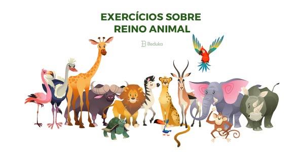 Exercícios sobre Reino Animal
