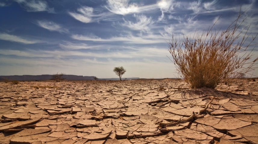 seca nordestina