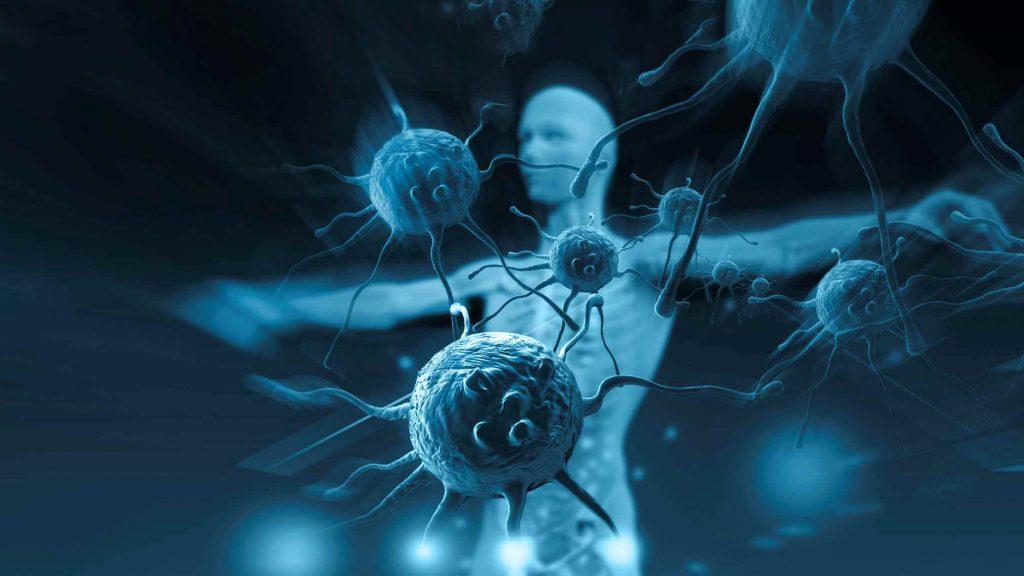 sistema imunologico do corpo humano