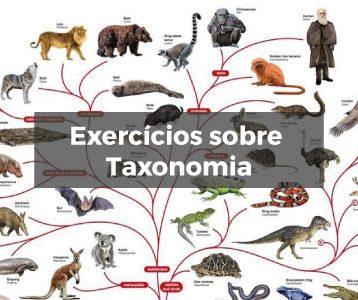 Exercícios sobre Taxonomia