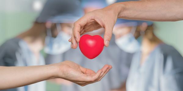 2. Doação de órgãos