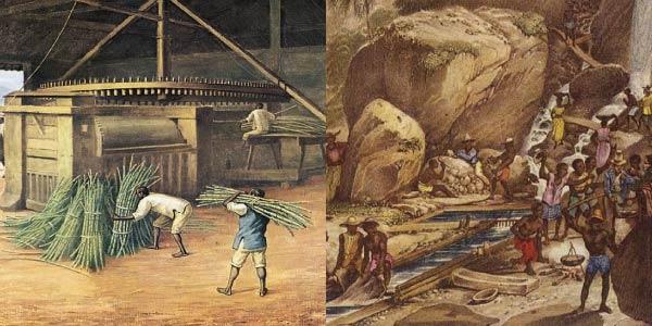 ouro-cana de açúcar-Exercícios sobre Revoltas do Período Colonial