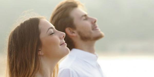 respiração-Exercícios sobre Sistema Excretor