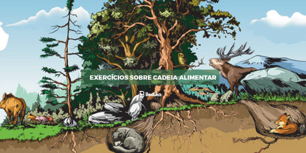 Exercícios sobre Cadeia Alimentar
