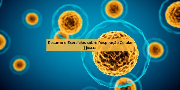 Exercícios sobre Respiração Celular