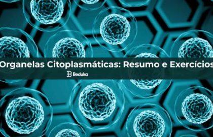 Questões sobre Organelas Citoplasmáticas