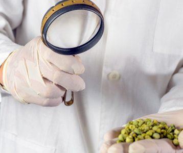 Nota de Corte Engenharia de Alimentos