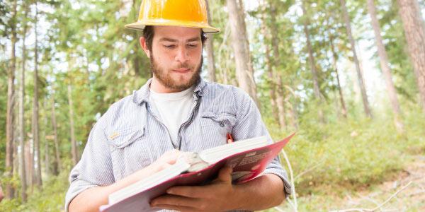 Nota de Corte Engenharia Florestal