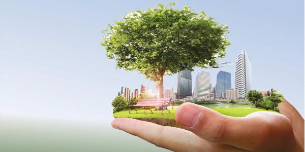 Nota de Corte Gestão Ambiental