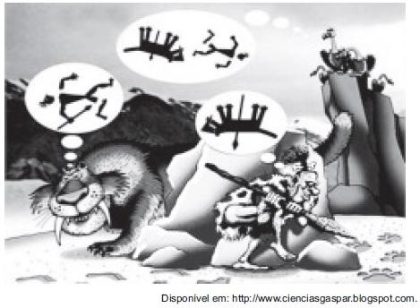 imagem que representa o tigre e o homem- Exercícios sobre Cadeia Alimentar