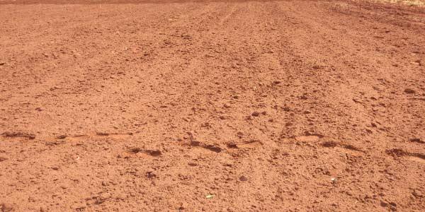Exemplo do solo arenoso para se preparar para os Exercícios sobre Tipos de Solo