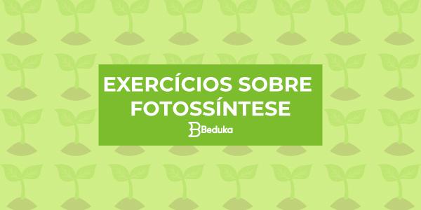 Exercícios sobre Fotossíntese com Gabarito