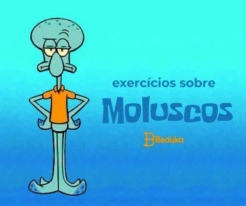 Exercícios sobre Moluscos