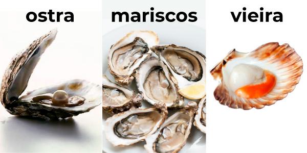 Mariscos, ostras e vieiras representando tipos de moluscos
