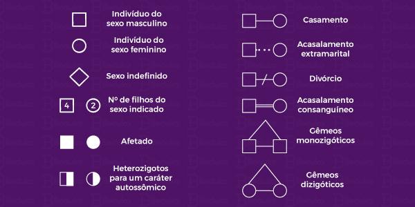principais símbolos utilizados nas representações dos heredogramas