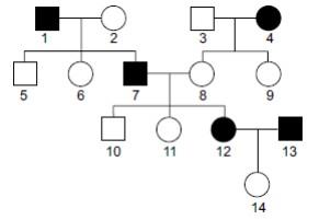 genetica-heredogramas-Famerp