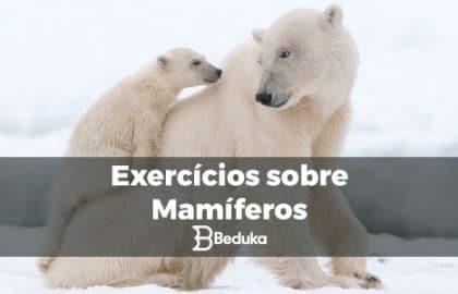 Exercícios_sobre_Mamíferos