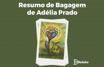 Resumo de Bagagem de Adélia Prado - tudo sobre!