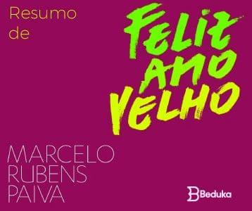 Resumo de Feliz Ano Velho - Marcelo Paiva!