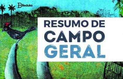 Capa do livro Campo Geral de Guimarães Rosa - Resumo e Análise do livro Campo Geral de Guimarães Rosa