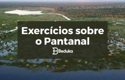 Exercícios_sobre_Pantanal