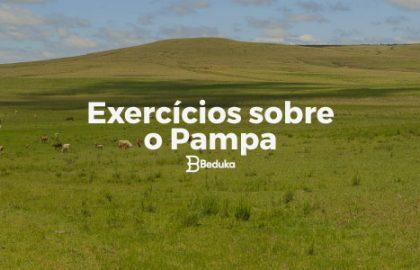 Exercícios_sobre_o_Pampa