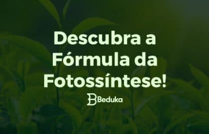 Qual a fórmula da fotossíntese - veja a explicação completa!