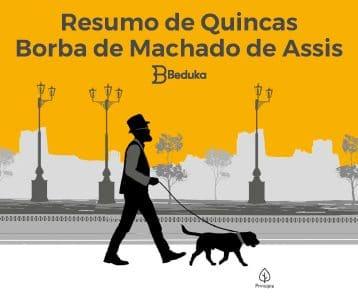 Resumo completo + Anáise do livro Quincas Borba!