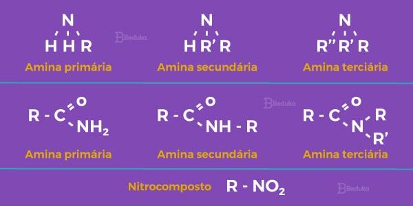 Exemplos-e-imagens-e-fórmula-estrutural-do-grupo-funcional-das-funções-nitrogenadas-amina-primária-secundária-e-terciária-amida-primária-secundária-e-terciária-nitrocomposto-1