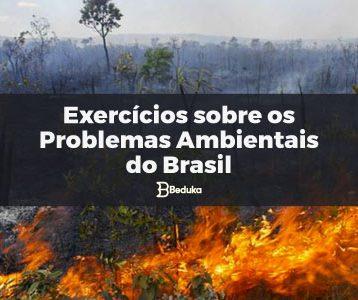 Exercícios_sobre_Problemas_Ambientais_do-Brasil