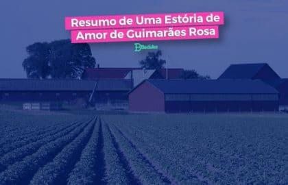 Resumo de Uma Estória de Amor + Análise - Guimarãe Rosa