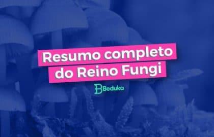 Tudo o que você precisa para entender o Reino Fungi!