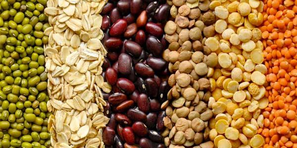 Leguminosas-nitrogenio-na-alimentação-humana-alimentos-ricos-em-nitrogenio-feijão-grãos