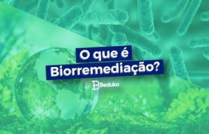 Tudo sobre o que é Biorremediação!