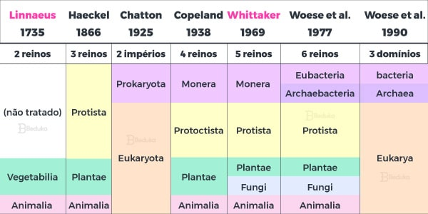 teorias-classificatvias-da-taxonomia