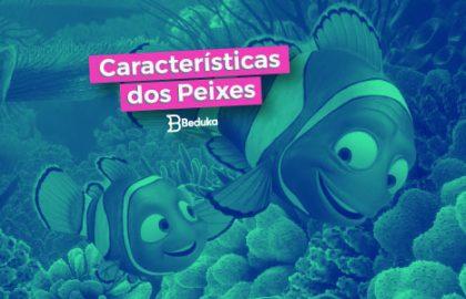 Características dos Peixes - tudo sobre!