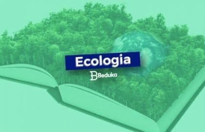 Entenda o que é Ecologia!